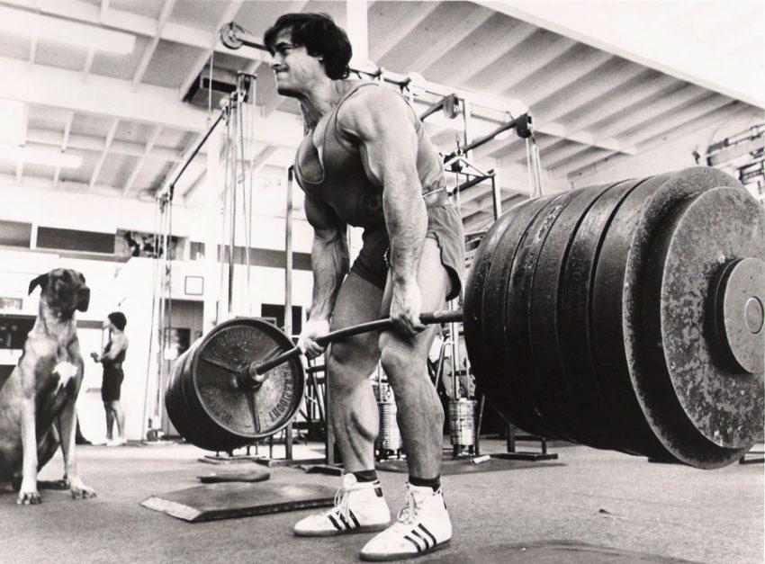 Советы по тренировкам и питанию