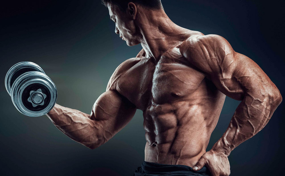 Как накачать локтевой сустав с гонтелями по 3 кг остеоартроз плечевого сустава лечение