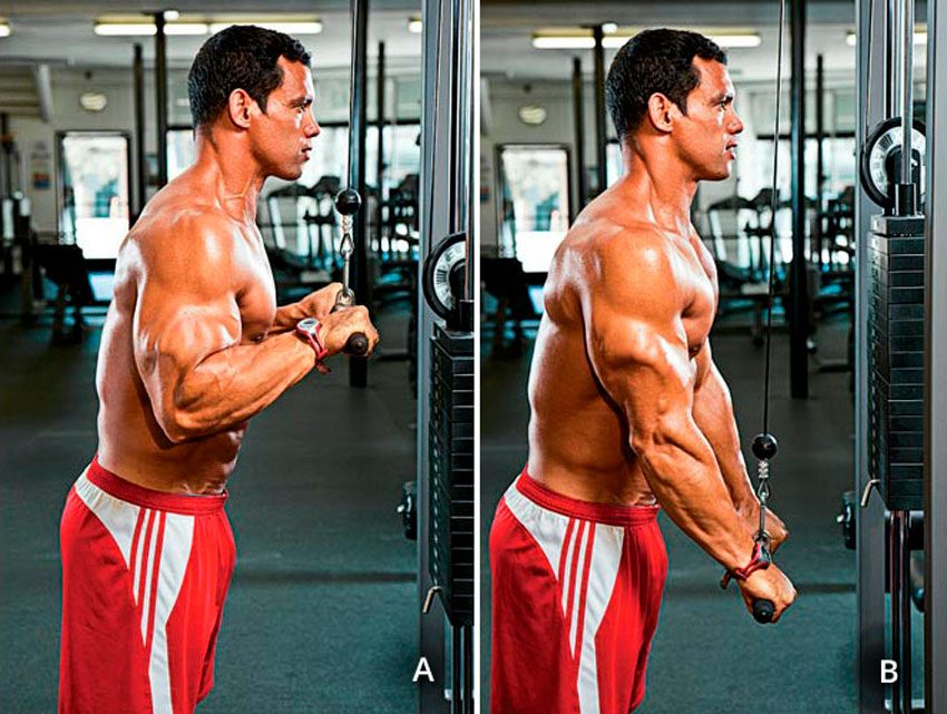 Сгибание рук на бицепс на верхнем блоке - Упражнения
