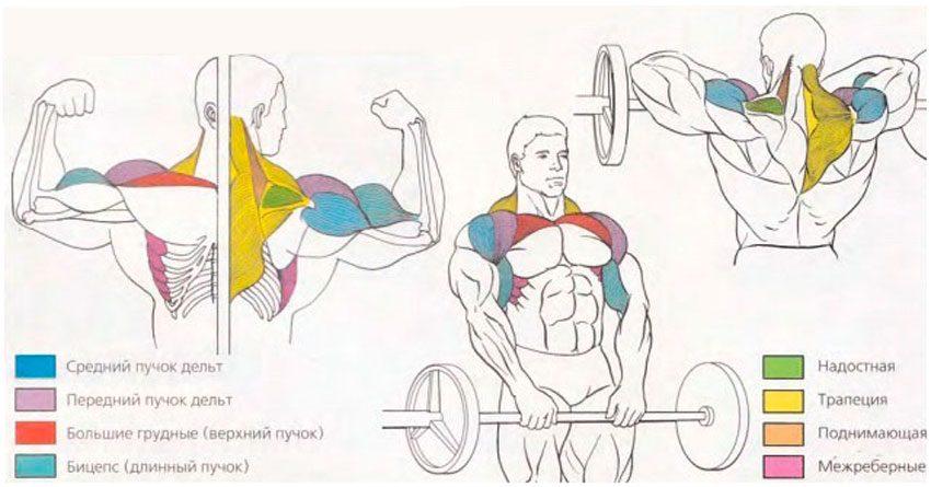 Почему нужно делать это упражнение
