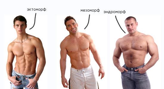 Типы телосложения как определить тип телосложения