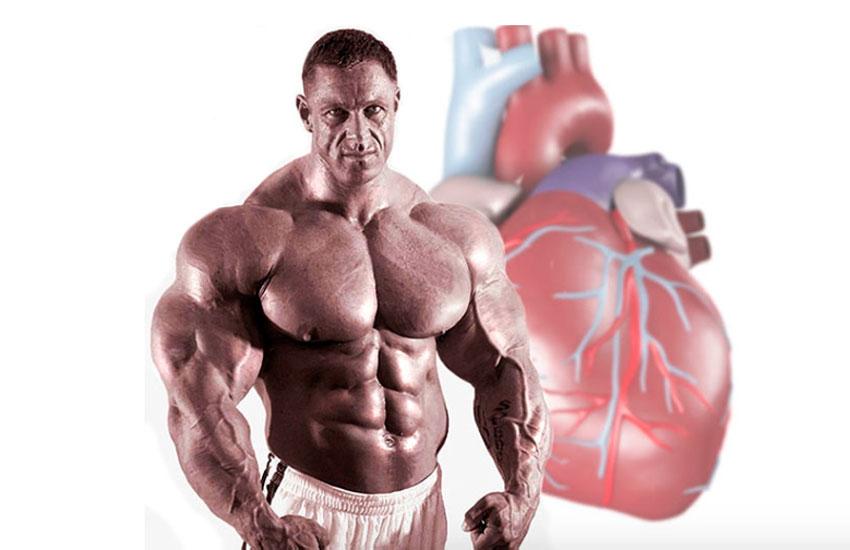 Увеличение мышечной массы вред thumbnail