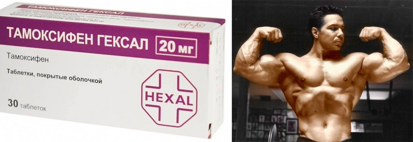 Тамоксифен дозировка для мужчин