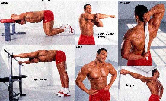Растяжка бицепса руки после тренировки лучшие упражнения на растяжку бицепса
