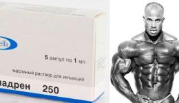 Омнадрен-250
