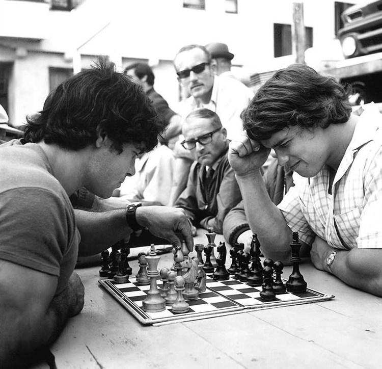 Арнольд и Франко шахматы