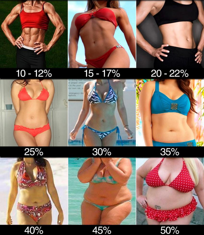 Содержание жира в процентном выражении: женское тело