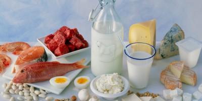 Чем вредна белковая диета