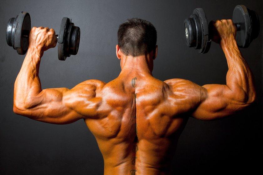 Базовые упражнения для мышц плеч