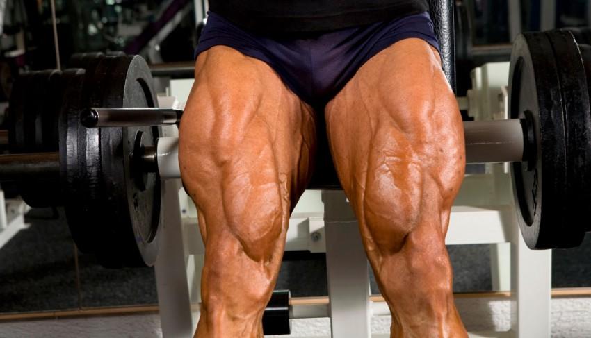 Четырехглавая мышца бедра, квадрицепс