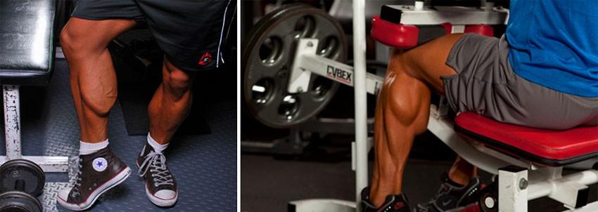 Упражнения для женщин на ноги (икроножные мышцы): делаем красивые икры в домашних условиях