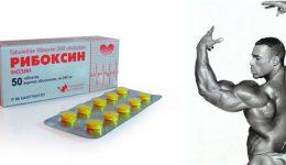 Рибоксин в бодибилдинге