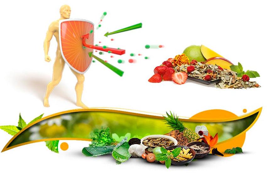 Как повысить иммунитет взрослому человеку, народными средствами в ... a267d6fd07e