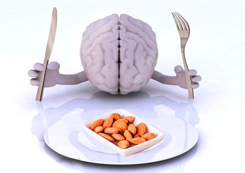 мозг и орехи