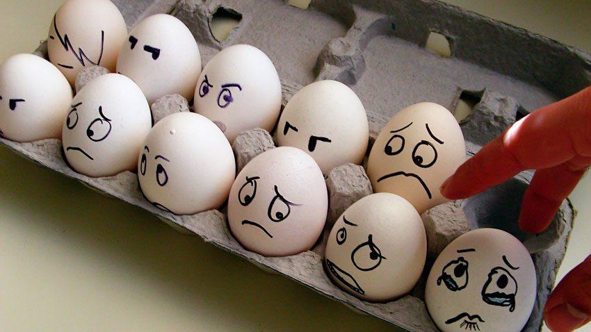 Как правильно выбирать яйца
