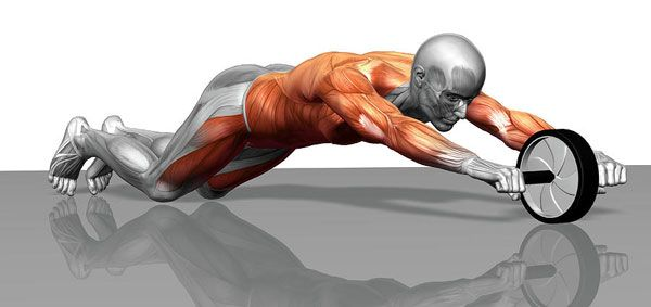 Какие мышцы можно тренировать