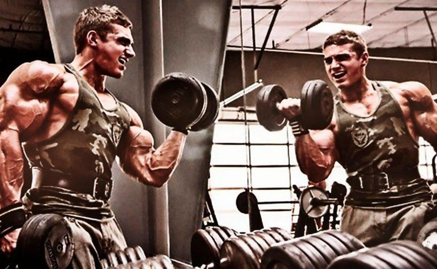 Частота тренировок каждой группы мышц