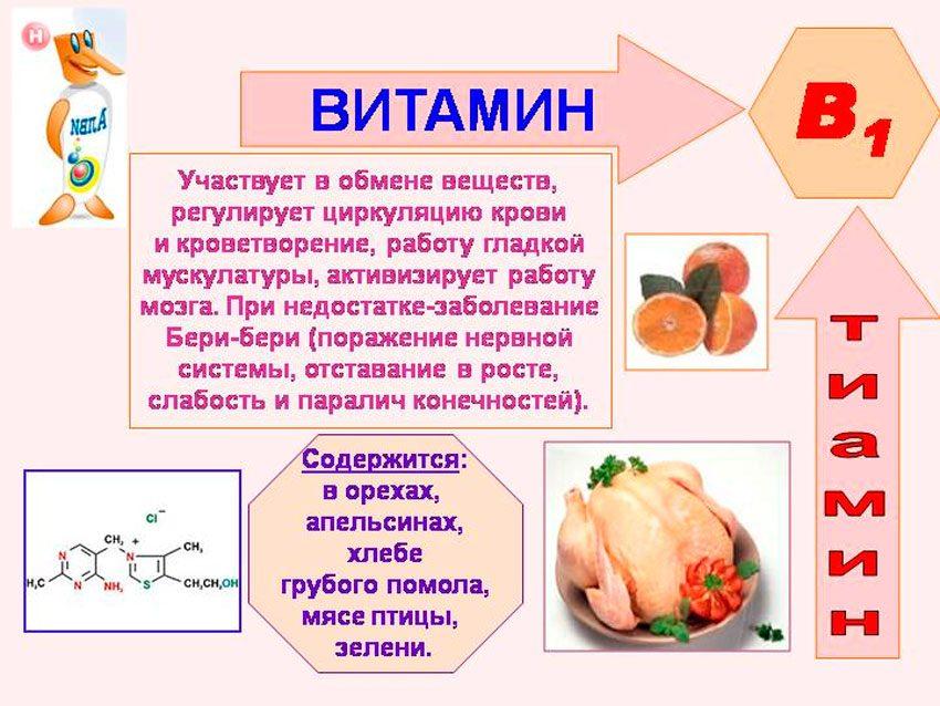 Функции витамина B1