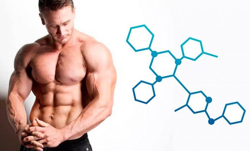 Эстроген и похудение