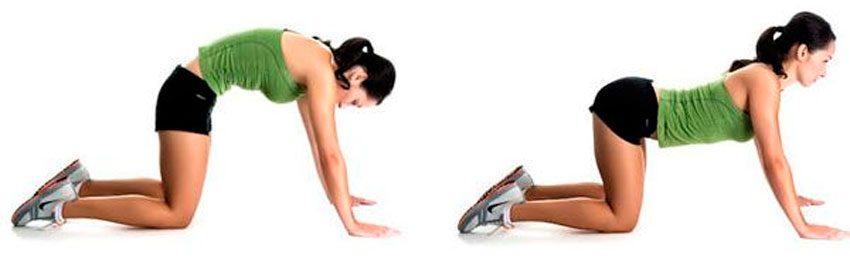 Упражнение для спины «Кошечка»