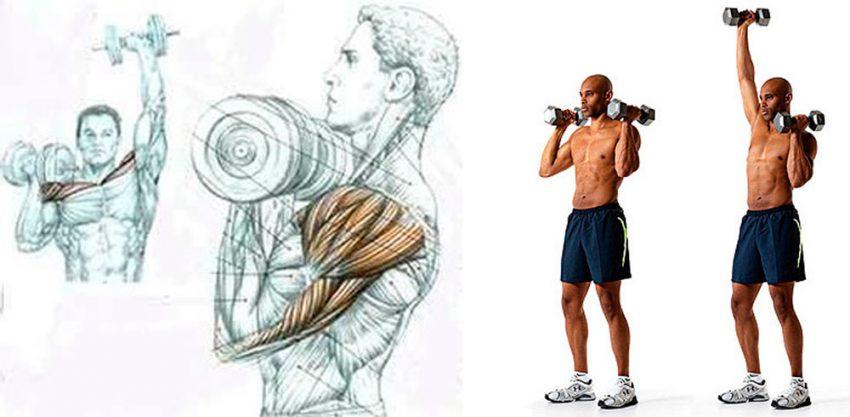 Упражнение для мышц верхнего пояса