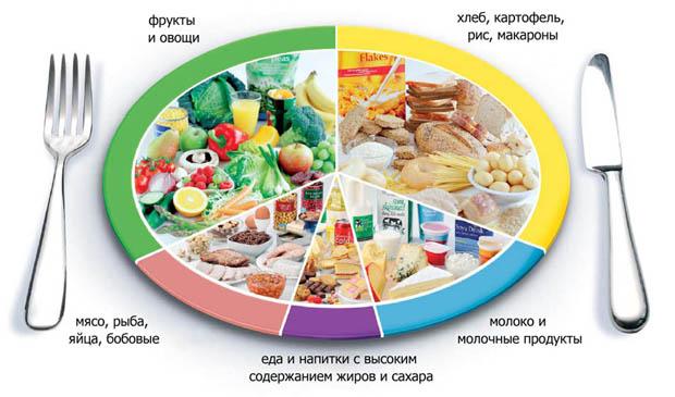 правильный режим питания для похудения отзывы