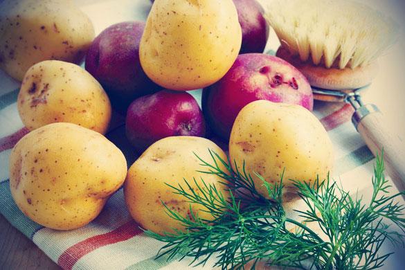 Белый картофель