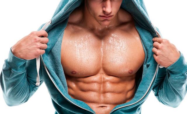 грудные мышцы