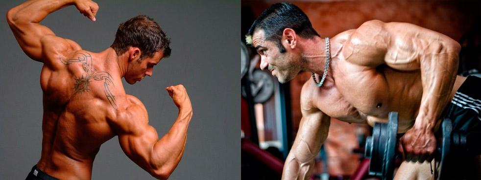 Как накачать мышцы спины в 27