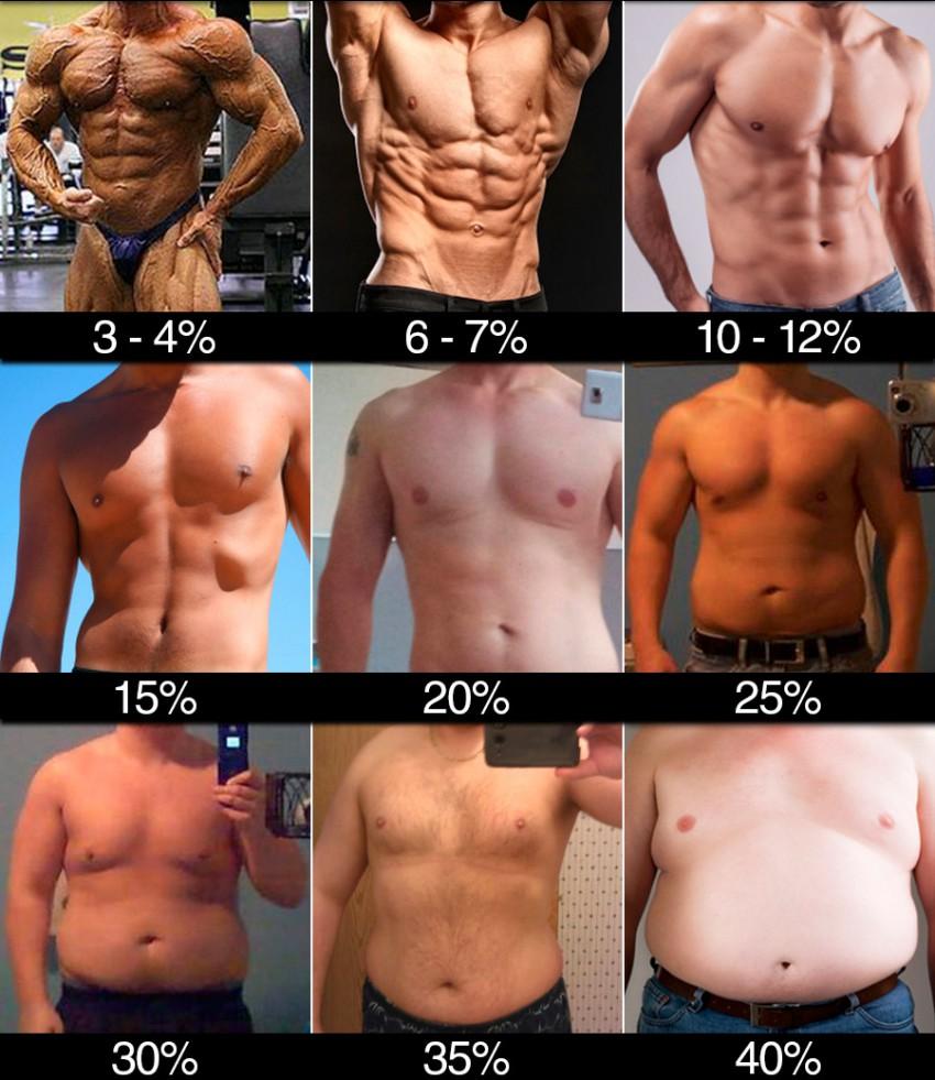 Содержание жира в процентном выражении: мужское тело
