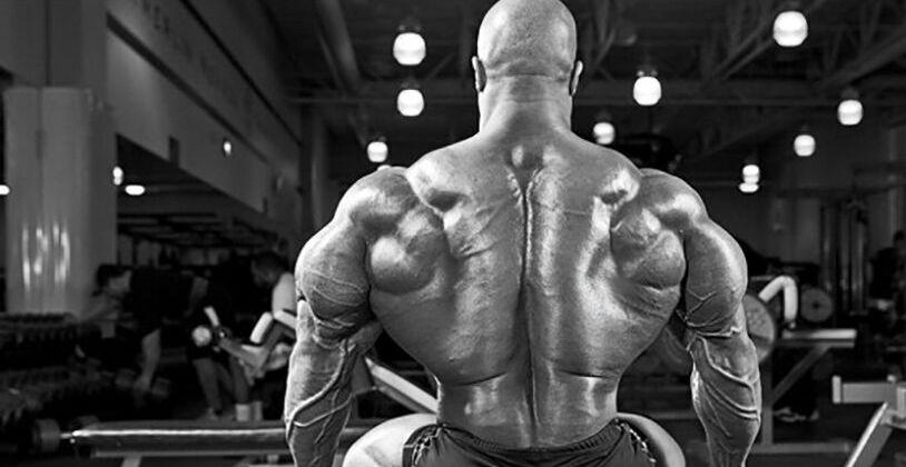 Базовые упражнения для мышц спины