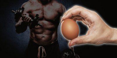 Сколько можно съедать яиц в день