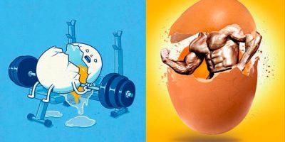 Вред и польза куриных яиц