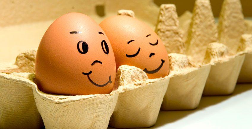 Употреблять куриные яйца