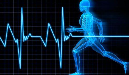 Пульс во время тренировок