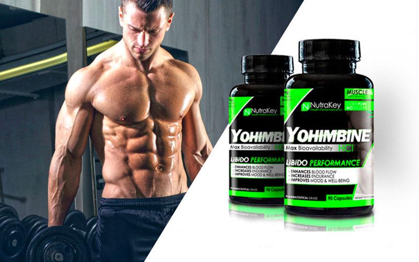 Кленбутерол йохимбин тироксин как принимать чтобы похудеть