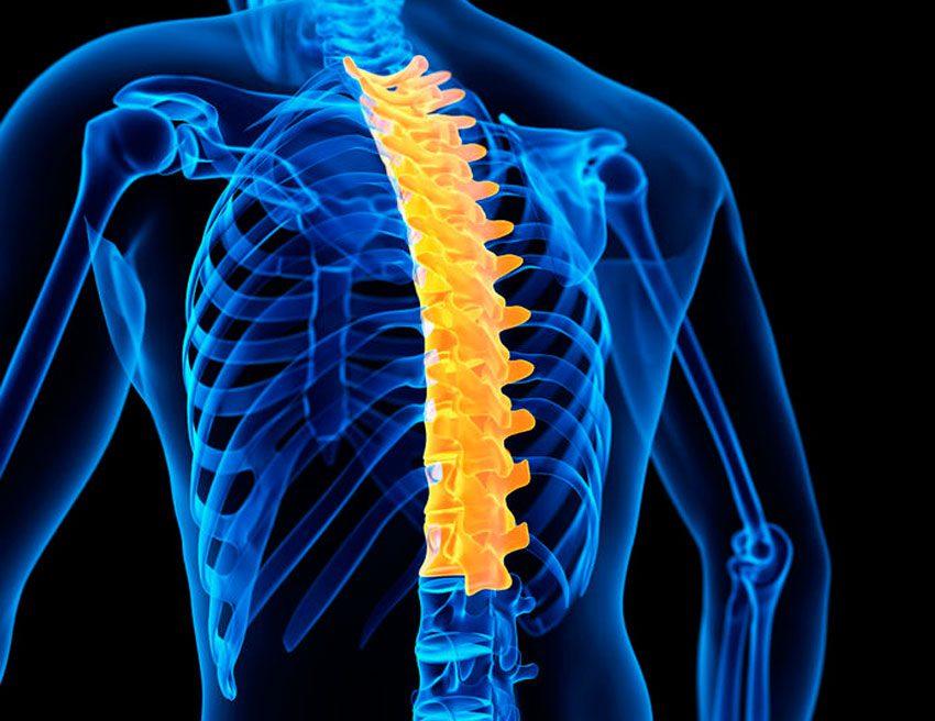 Защемление нерва в грудном отделе позвоночника