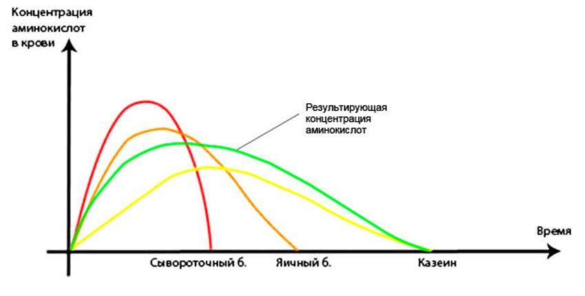Составляющие комплексных протеинов