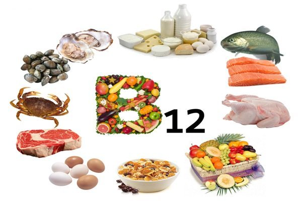 Источники витамина В12